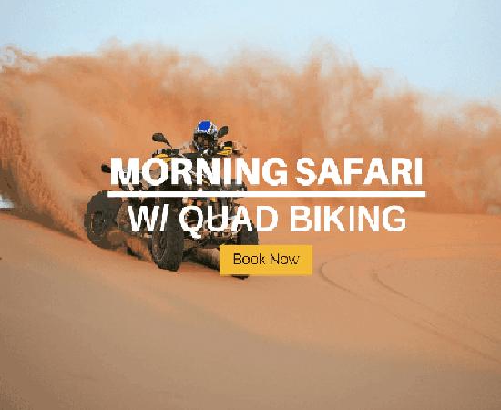 Morning-safari