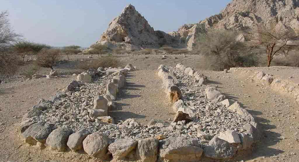 Shimal in Ras al Kaimah